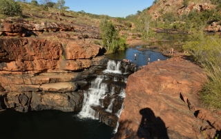 gibb river, bungle bungles, bells gorge, windjana gorge, galvans gorge, barnett river, tours of australia, home valley station, el questro, seniors tours, seniors tours of australia