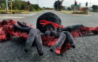 Matilda, spider, redback spider, Matilda the redback spider, Christmas, Christmas lunch, Aussie Redback Tours, Redback tours, spider mascot
